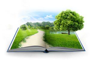 Pelatihan Audit Lingkungan